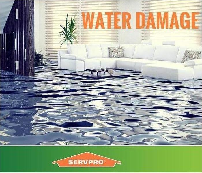 Water Damage The Benefits Of Prompt Water Removal