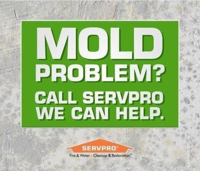 Mold Remediation Got Mold? Call SERVPRO of Tupelo