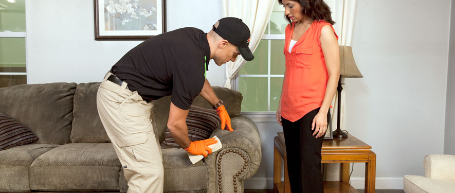 Tupelo, MS carpet upholstery cleaning