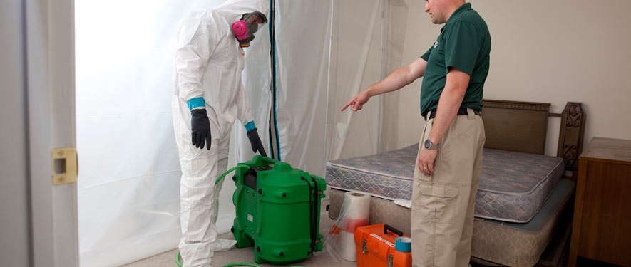 Tupelo, MS mold removal process